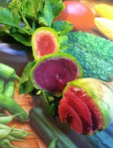 beautiful watermelon radish