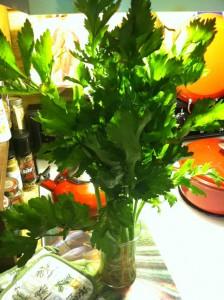 celery '13