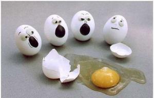 egg drop 11